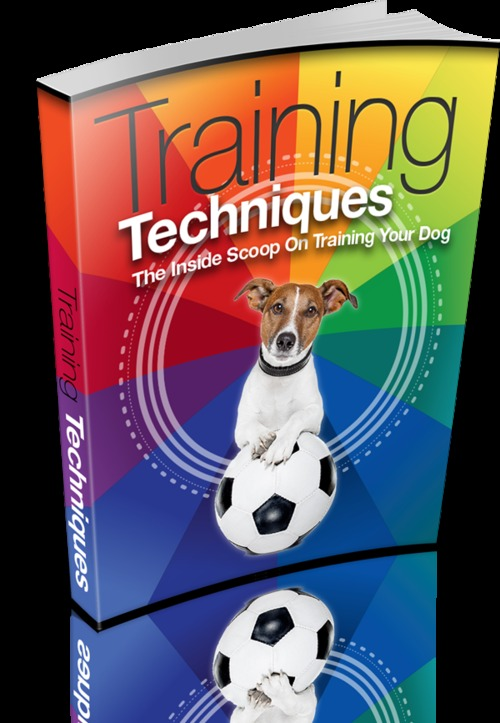 Product picture DOG TRAINING TECHNIQUES.